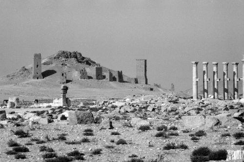 Palmyra, Tal der Gräber: Westnekropole (al-Maqaber), Nordosthang. Aufnahme: Bildarchiv Foto Marburg / Jan Gloc, 1985